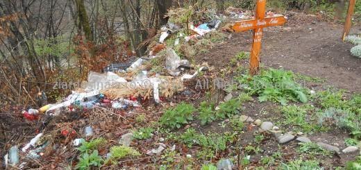 Cimitirul-Setu-Sinaia-03.12.2014-520x245