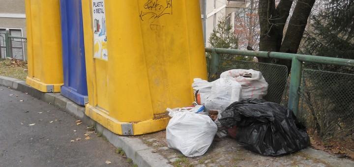 Tomberoane de gunoi in statiunea Sinaia