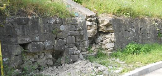 zid 1