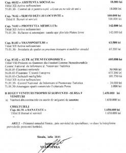 proiect buget 2